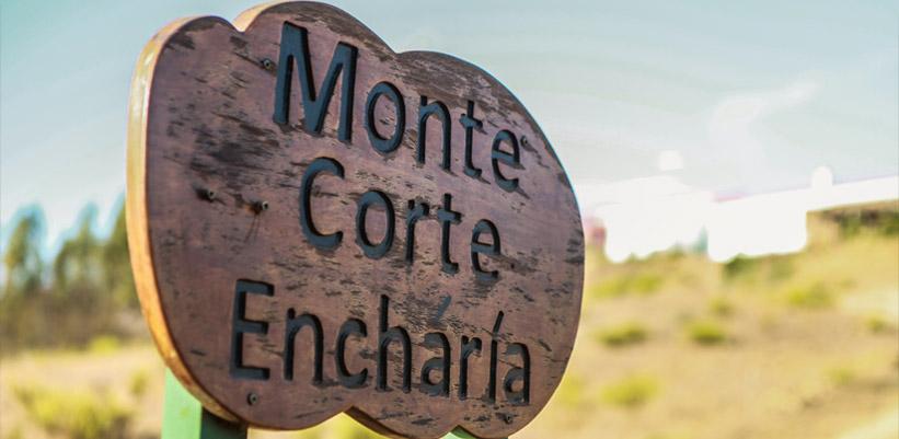 Monte Corte Enchária Galeria